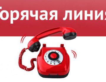 В Ярославской области начала работу